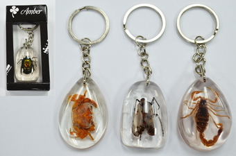 BUG  LUCITE KEY CHAINS