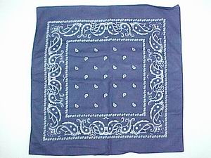 NAVY COLOR PAISLEY BANDANNA
