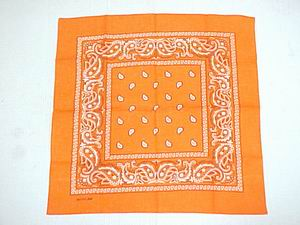 PAISLEY BANDANNA-ORANGE COLOR